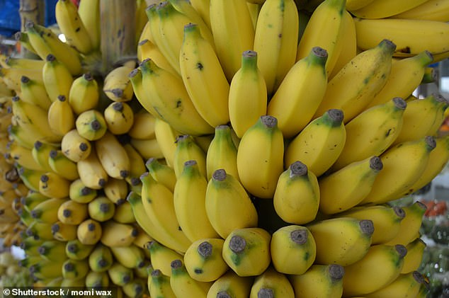 The fungus could halt the imports of the five billion bananas that come to the UK every year