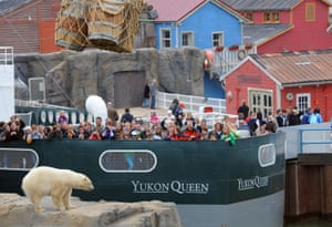 Cold comforts … visitors and bear at Hanover zoo's Yukon Bay zone.