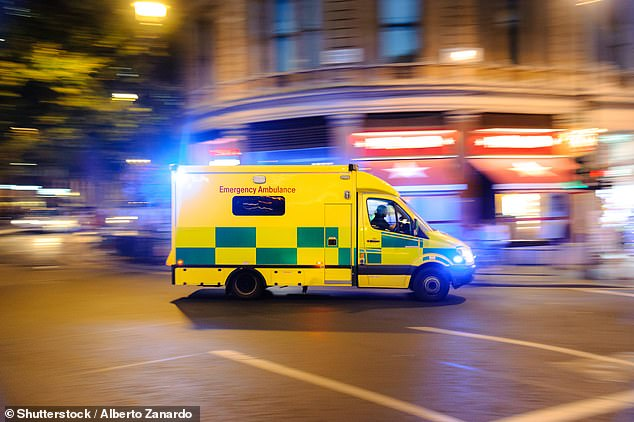 Paramedics have warned of festive revellers diverting attention away from patients in need of care