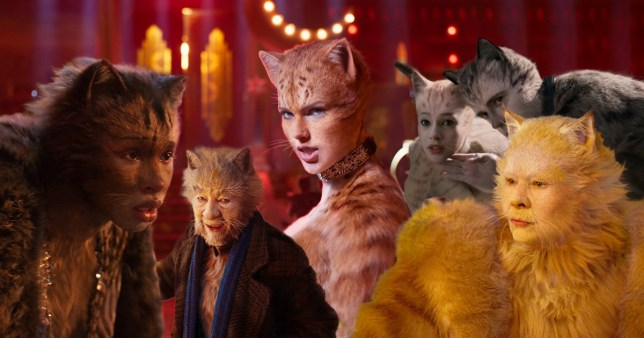 Cats reviews
