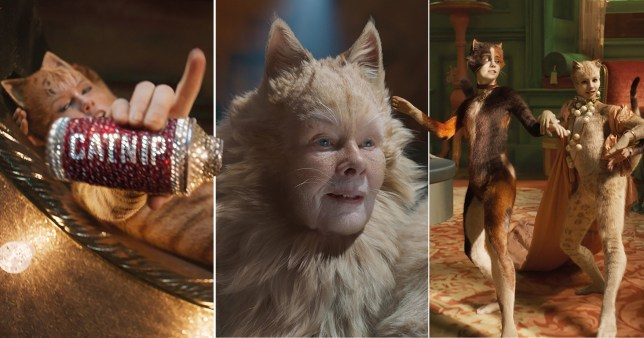 Scenes from Cats