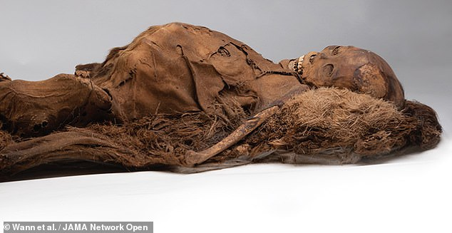 Scans of mummified Inuits from 16th-century Greenland revealed that the ancient hunters suffered from clogged-up arteries despite a diet rich in omega-3 fatty acids