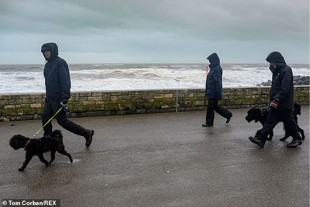 Walking briskly for 20 minutes a day could reduce the risk of seven types of cancer, a study has found. File image of Boxing Day dog walkers in Dorset