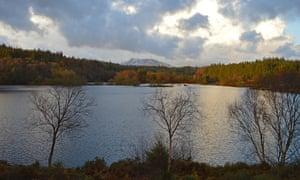 Llyn Elsi in the Gwydir Forest.