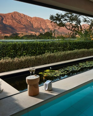 Leeu Estates - Spa - plunge pool (1)