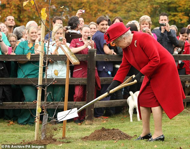 The 'Forest of Britain' project would serve to connect various existing conservation sites and could be established as part of the celebrations of the Queen's platinum jubilee in 2022. Pictured,Elizabeth II planting a tree during a visit to the Newmarket Animal Health Trust