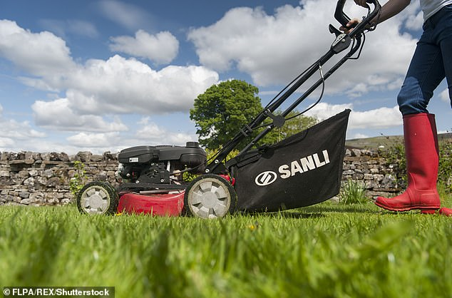 Some466 injured themselves while mowing lawns in around 12 months alone (stock image)