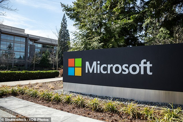 Microsoft have already taken action against groups from China, Russia and Iran in similar court cases that led to the seizure of websites