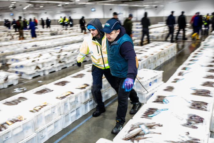 Workers move boxes of fish around at Peterhead Fish Market