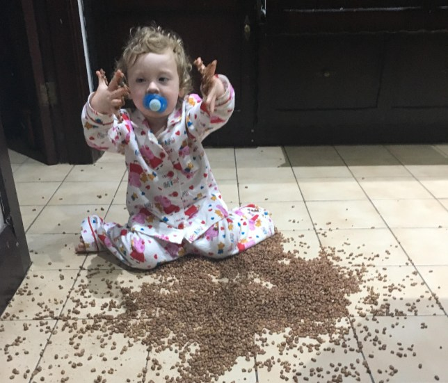 One-year-old Evelyn from Liverpool was feeling a bit peckish, so helped herself to cereal. She was extra careful in making sure she distributed the cereal all over the floor.