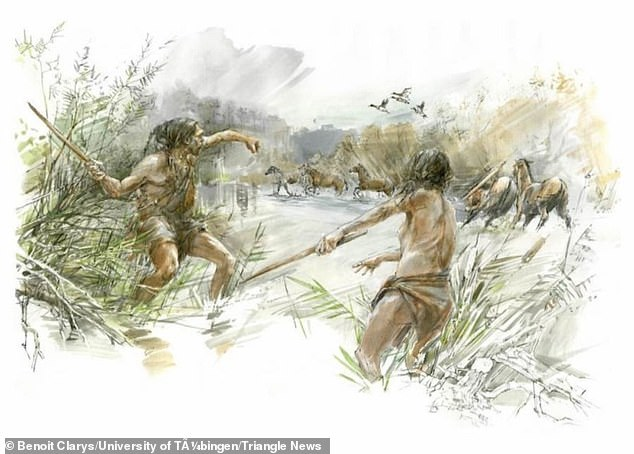 Hunters on the Schöningen lakeshore likely used the throwing stick to hunt waterbirds