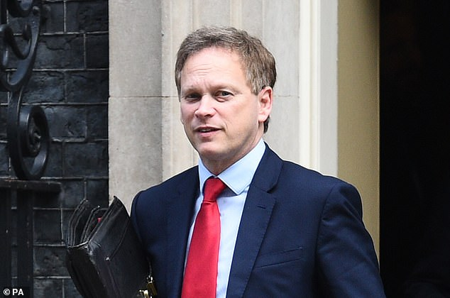 UK Transport Secretary Grant Shapps (pictured) revealed on Tuesday that the UK were set to make deals with several countries about the idea of air bridges