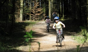 Cycling in the Forest of Dean