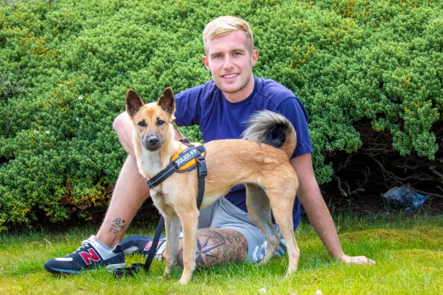 Poppy the dog who was rescued by Mark Jeffries who brought her and three other vulnerable dogs back to Edinburgh after spending lockdown with them in Thailand.