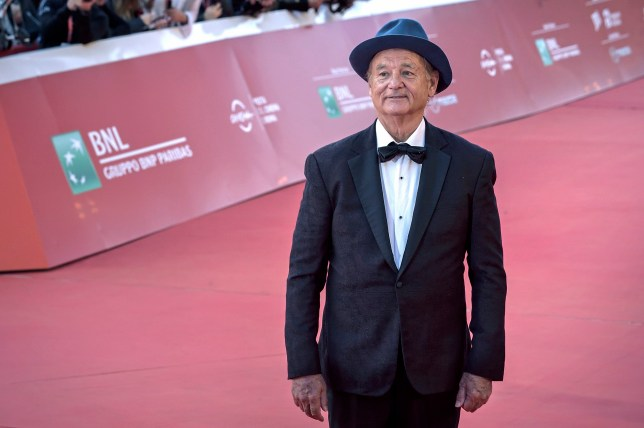 Bill Murray at Rome Film Fest 2019