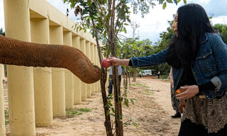 Cher interacts with Kaavan, an elephant transported from Pakistan to Cambodia, at the sanctuary in Oddar Meanchey Province earlier this month.