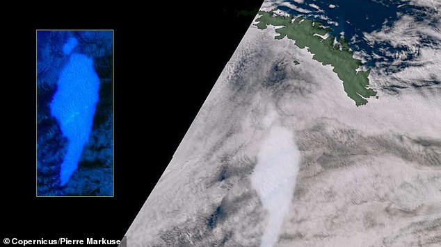 The Copernicus Sentinel-3 satellite (pictured) and NASA's MODIS satellite snapped images of the iceberg this week, revealing it has lost a huge chunk along its path of destruction