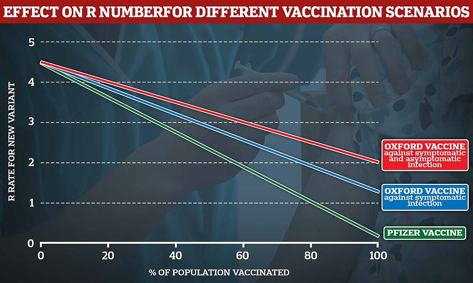 Pictured, the impact on R rate for various vaccination scenarios, herd immunity is only achieved if R is kept below 1. The green line shows the Pfizer vaccine, and the blue line shows the effectiveness of Oxford's vaccine according to the 70.4% effectiveness claimed in data sent to MHRA. The red line shows data from phase 3 clinical trials for two standards dose jabs of the Oxford jab against both symptomatic and asymptomatic infection
