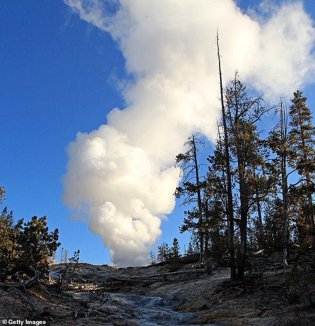 Researchersfound few indications of magma movement, which is key for an eruption, lurking beneath Yellowstone's Steamboat Geyser