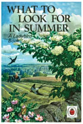 The original cover for What to Look for in Summer.