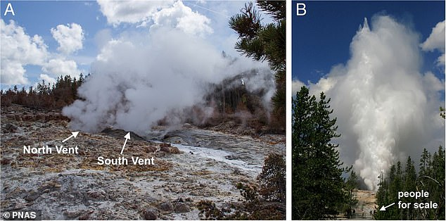 They found that the deeper the reservoir, the higher the eruption jet.Steamboat Geyser, with a reservoir about 82 feet below ground, has the highest column of 377 feet. This allows the reservoir to fill with more water to fuel more eruptions