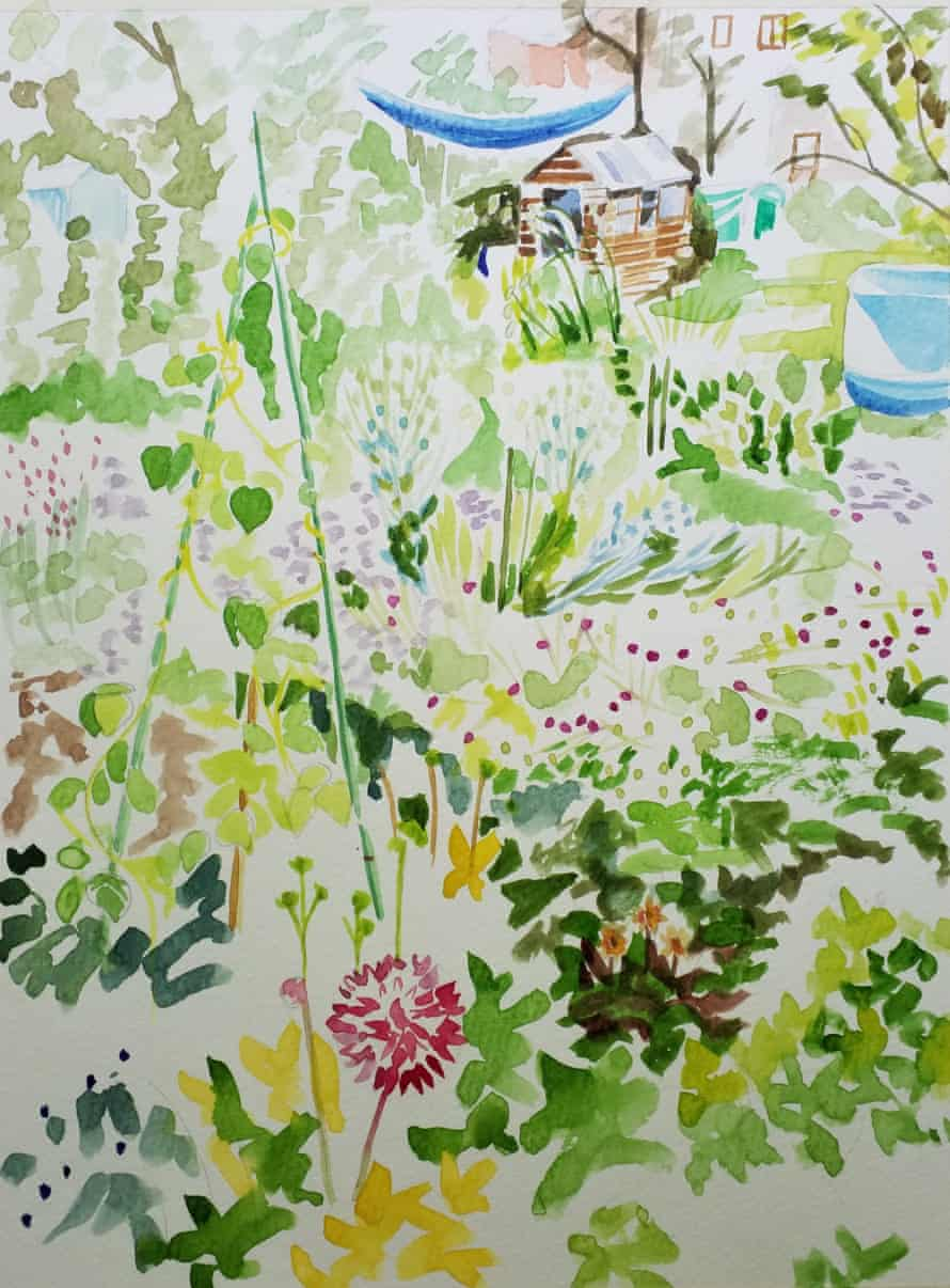 Allotment watercolour