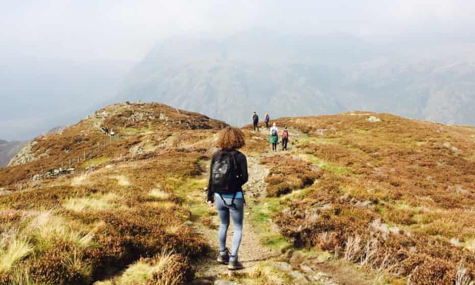 Guided mountain hikes and forest bathing from Adventure Yogi.