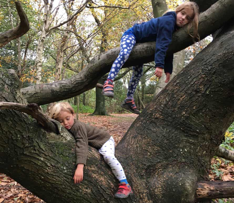 The author's children pretending to be sloths on a trip to the park.