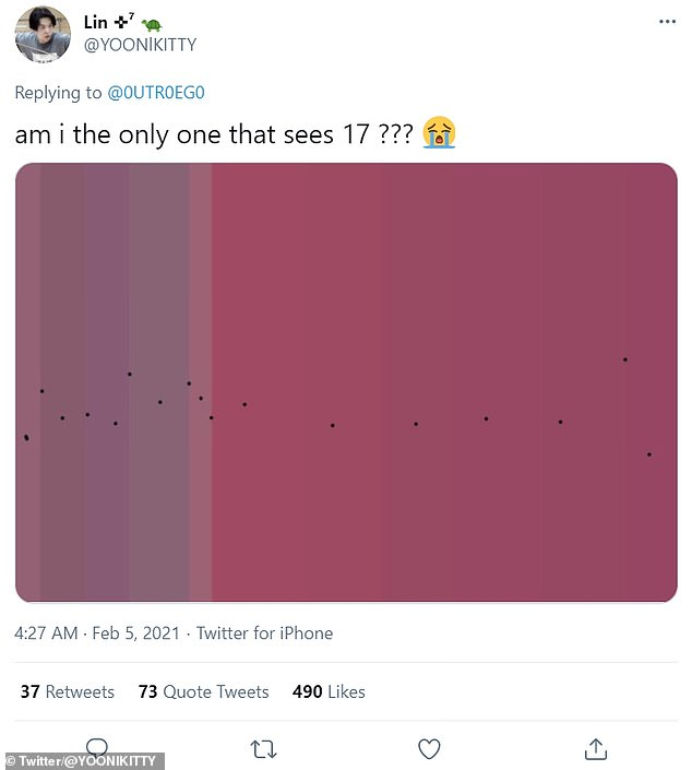 One user said they could see 17 shades, and marked them out - but the consensus was somewhere between 11 and 15
