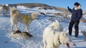 Out on the ice at Ilulissat with sled dogs.