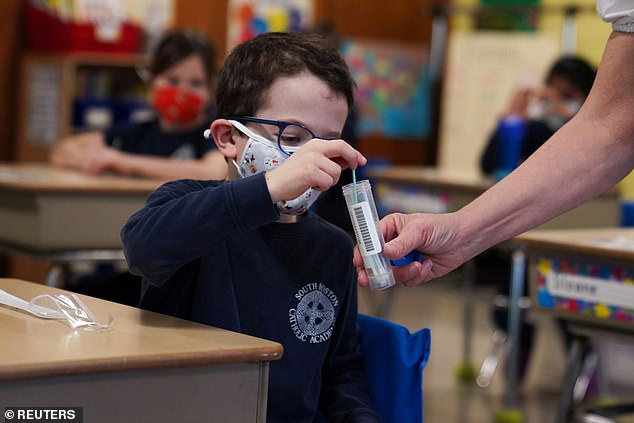 Wyoming has the highest percentage of cumulative child cases at 19.8% and North Dakota has the highest rate with about 8,400 cases per 100,000 children. Pictured:A child places his testing swab in the vial for pool testing at South Boston Catholic Academy in Boston, Massachusetts, January 2021