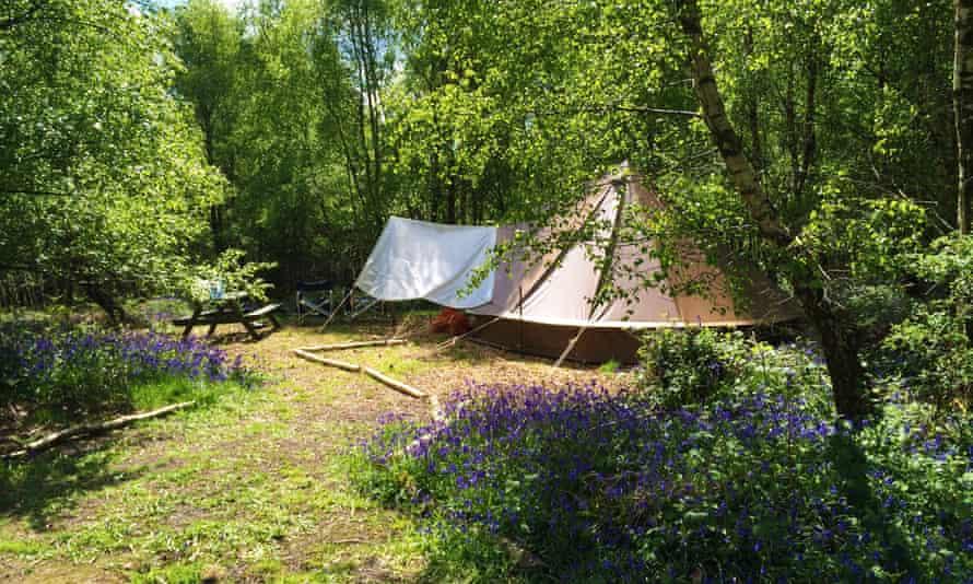 Beech Estate campsite