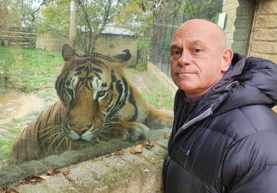 Ross Kemp and a tiger