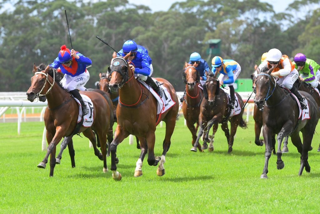 Horse Racing Terms - Your Guide to the Races