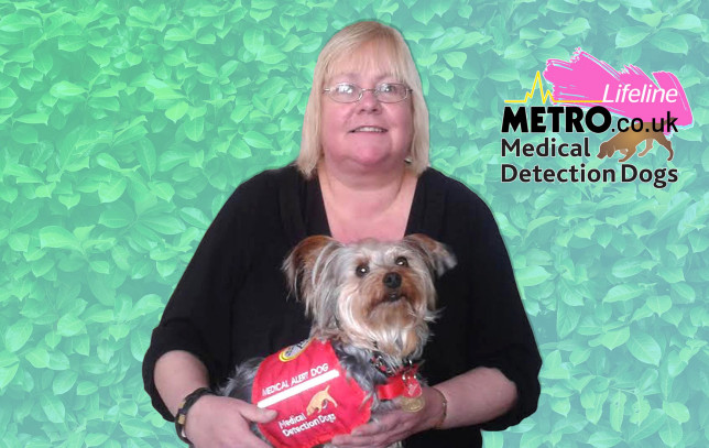 Yvonne Nicholson with her Yorkshire Terrier Milly, who is wearing a Medical Alert Dog coat.