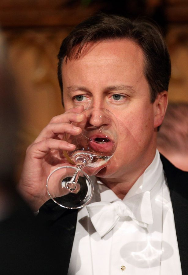 David Cameron is among the politicians criticised in the book