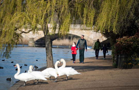 A family walking in the early morning sun at Hyde Park in central London,