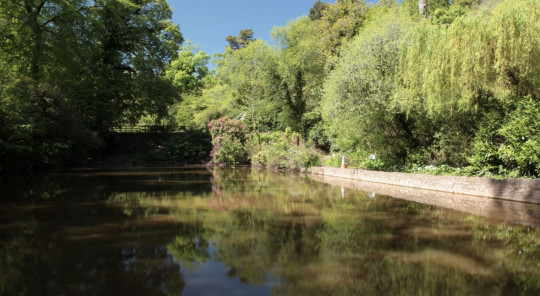 London' most beautiful parks - cockington country park, torquay