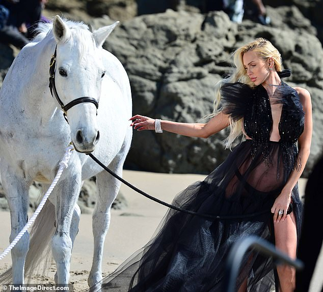 Mane attraction: The 31-year-old realtor/reality star donned a sheer black gown which teased her bump as she played around with a white stallion shoreside