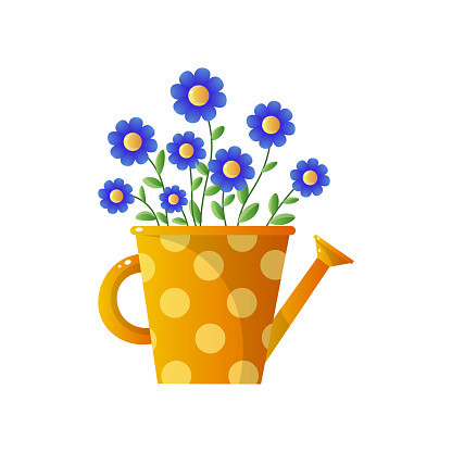 Bouquet of blue wild flowers in jug on white background