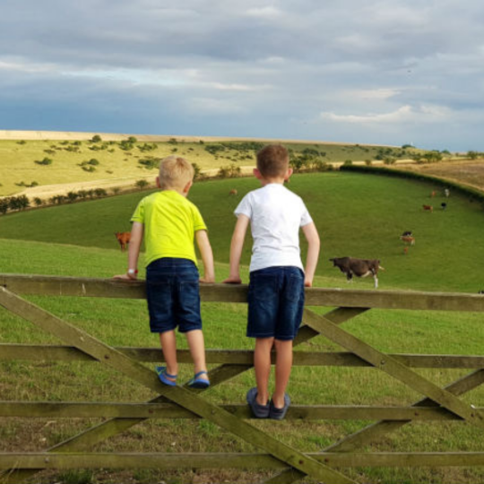 You can stay alongside baby lambs and calves on this spring farm holiday