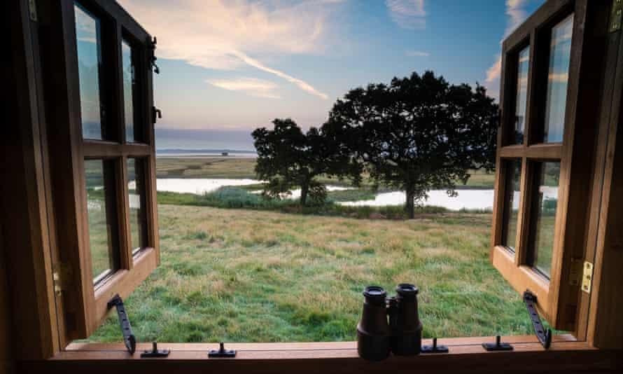 'Superb views': Elmley Nature Reserve, Kent.