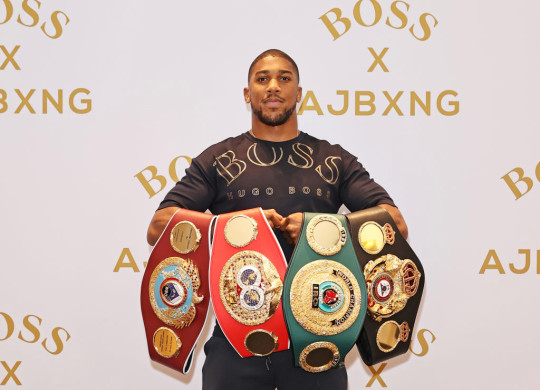 Joshua will put his WBA, IBF, WBO and IBO belts on the line against Fury