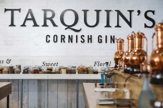 Gin School, Padstow