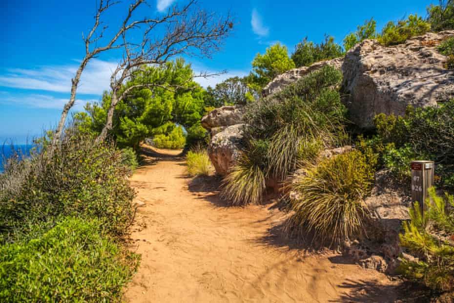 View of the Camí de Cavalls and foliage on a sunny day en route to Cala Pilar Beach. Menorca, Spain.