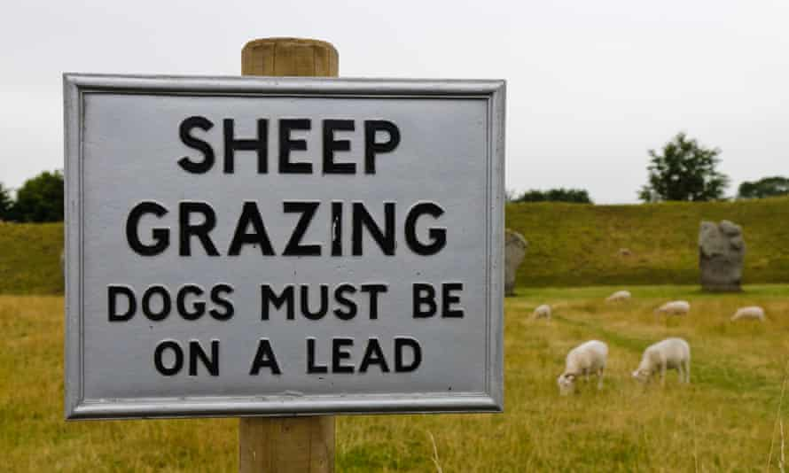 Sign warning public to keep dogs on a lead as sheep are grazing