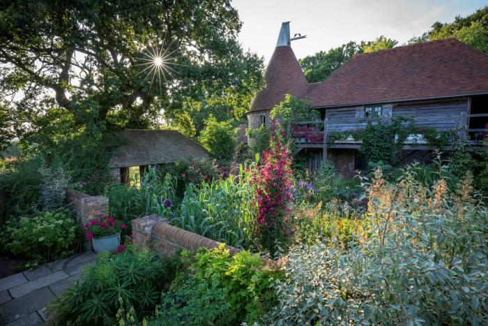 Evening light falls over Sarah Raven's East Sussex garden