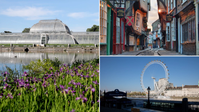 pictures of kew gardens, the shamples in york and the london eye