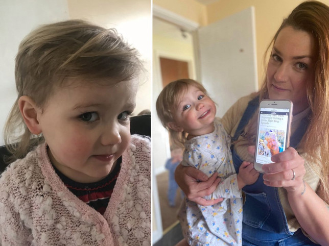 pictures of a Toddler who wanted to look like a princess and gave herself a mullet and her mum