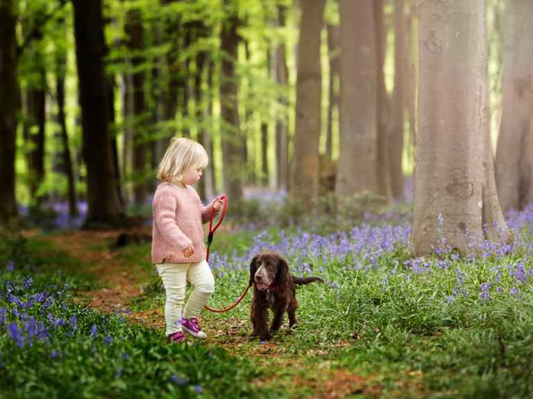 Poppy Penson aged two among the bluebells (Nature Nurture Photography PA Real Life)